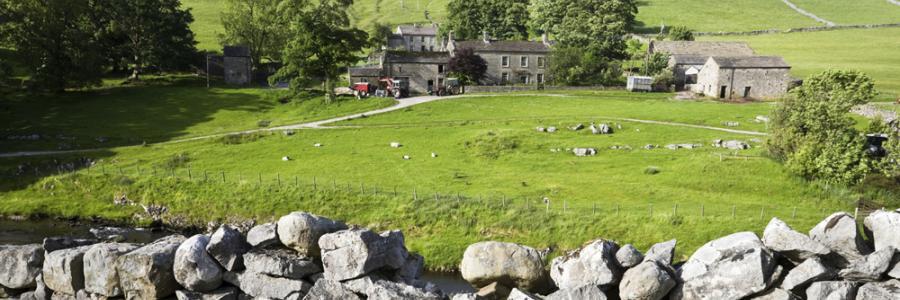 Agriculture Law Carlisle, Wigton, Cumbria